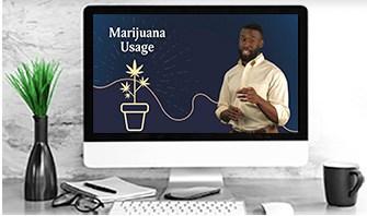 Marijuana Laws HR Policy